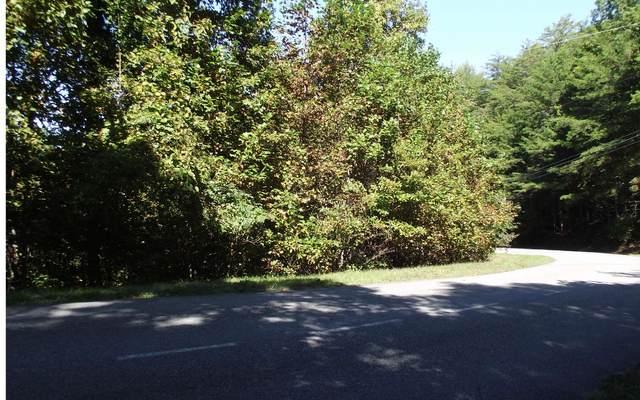 00 My Mountain Rd, Morganton, GA 30560 (MLS #301159) :: Path & Post Real Estate