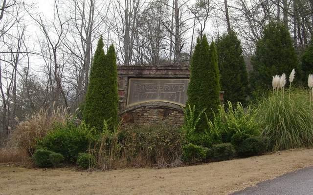 #24 Mill Ridge, Hiawassee, GA 30546 (MLS #301178) :: RE/MAX Town & Country
