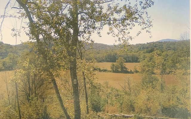 Bristol Road, Hayesville, NC 28904 (MLS #301181) :: Path & Post Real Estate