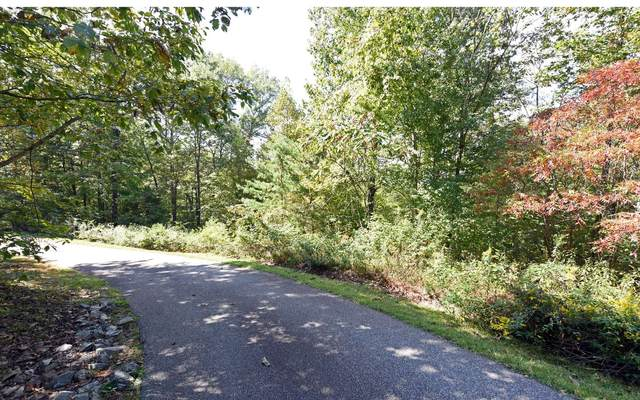 Out The Ridge Lot 7, Blairsville, GA 30512 (MLS #301228) :: RE/MAX Town & Country