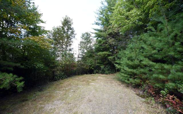 Up The Ridge Lot 8, Blairsville, GA 30512 (MLS #301237) :: Path & Post Real Estate