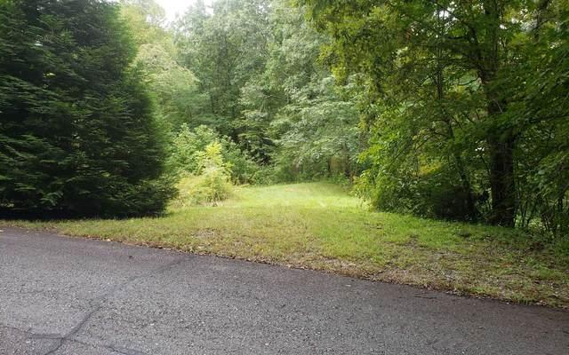 35A Dan Knob Drive, Hayesville, NC 28904 (MLS #301262) :: Path & Post Real Estate