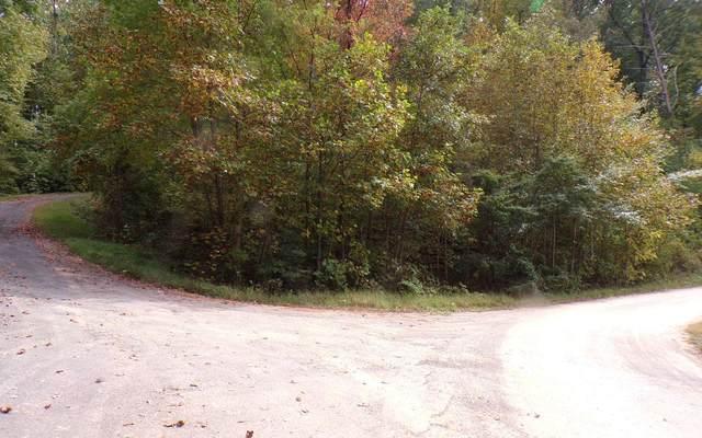 LT 17 Sutton Cove, Hiawassee, GA 30546 (MLS #301295) :: Path & Post Real Estate