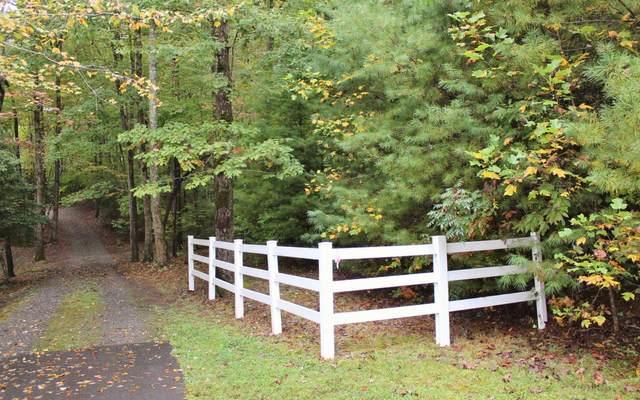 5 Ludlum Lane, Hayesville, NC 28904 (MLS #301363) :: Path & Post Real Estate