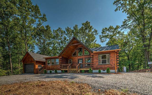 790 River Ridge Drive, Blue Ridge, GA 30513 (MLS #301370) :: Path & Post Real Estate