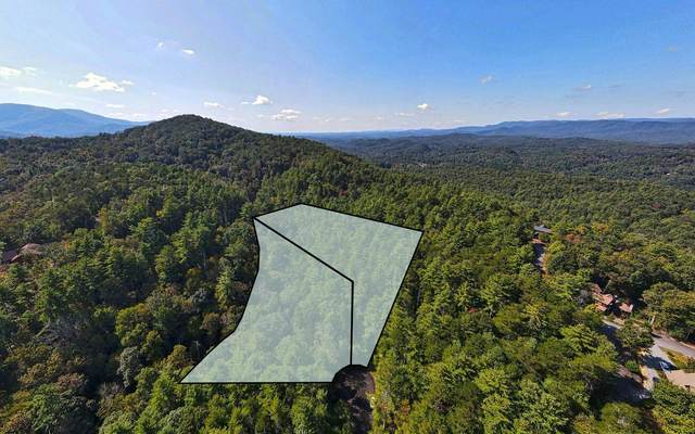 LOTS Crockett Mountain, Cherry Log, GA 30522 (MLS #301371) :: Path & Post Real Estate