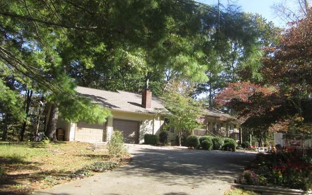 38 Pisgah Drive, Blairsville, GA 30512 (MLS #301572) :: RE/MAX Town & Country