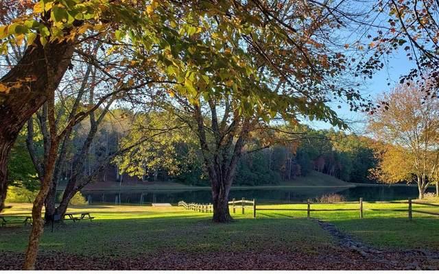 53 Living Water Dr, Epworth, GA 30541 (MLS #301587) :: Path & Post Real Estate