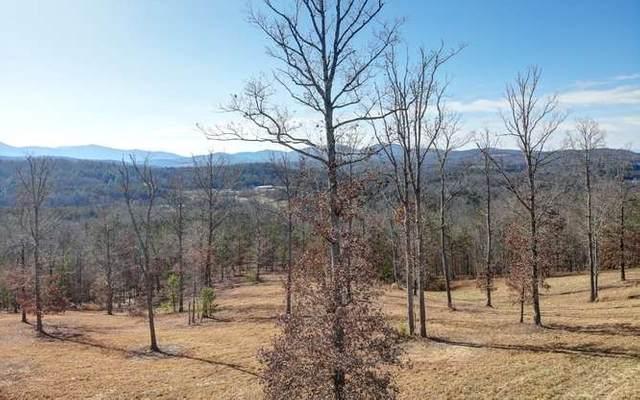 LT 90 Riverside On Lake, Blairsville, GA 30512 (MLS #301616) :: RE/MAX Town & Country