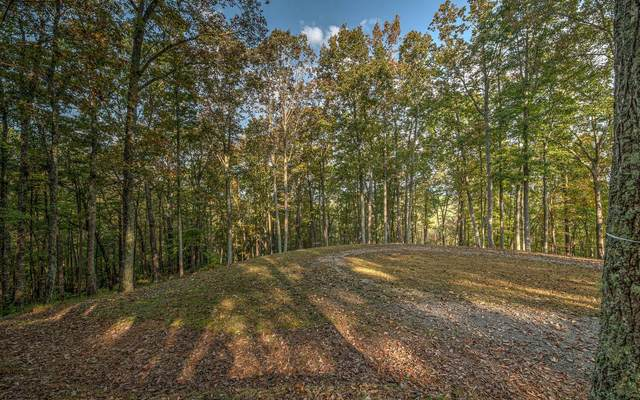 LT20R Settlement Trail, Ellijay, GA 30536 (MLS #301639) :: Path & Post Real Estate