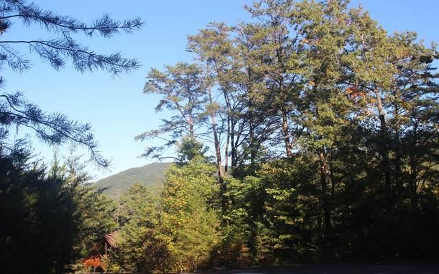 LT 38 Laurel Creek Trail, Cherry Log, GA 30540 (MLS #301659) :: RE/MAX Town & Country