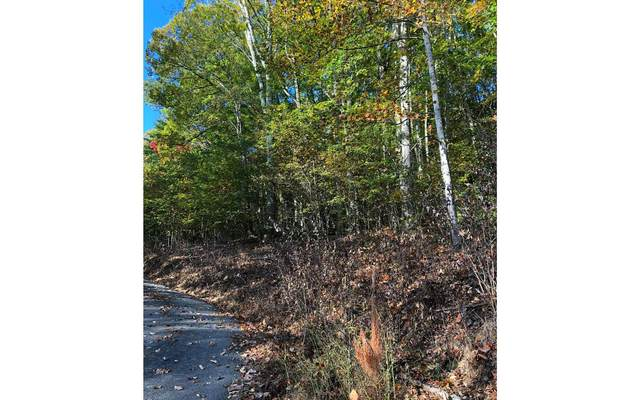 LOT27 Truelove Mountain, Young Harris, GA 30582 (MLS #301667) :: Path & Post Real Estate
