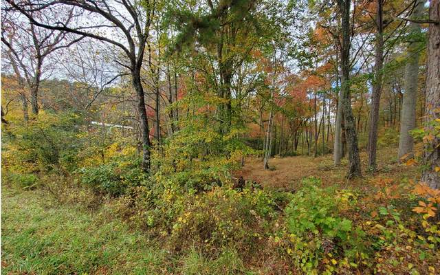 8 Chimney Top Trail, Murphy, NC 28906 (MLS #301817) :: Path & Post Real Estate