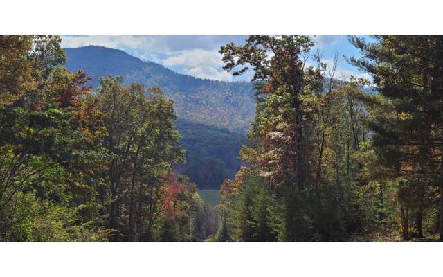 37 Chimney Top, Murphy, NC 28906 (MLS #301844) :: RE/MAX Town & Country