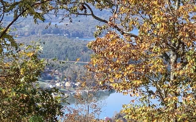 LT 77 Dan Knob Subdivision, Hayesville, NC 28904 (MLS #301853) :: Path & Post Real Estate