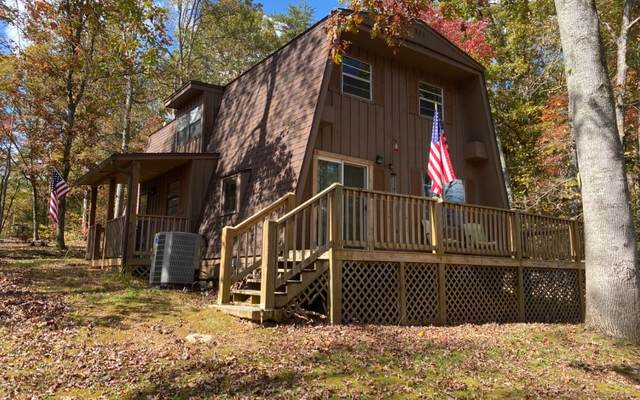 50 Mountain View Trl, Marble, NC 28905 (MLS #301860) :: RE/MAX Town & Country