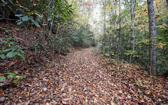 TBD Mclean Rd, Andrews, NC 28901 (MLS #301876) :: RE/MAX Town & Country