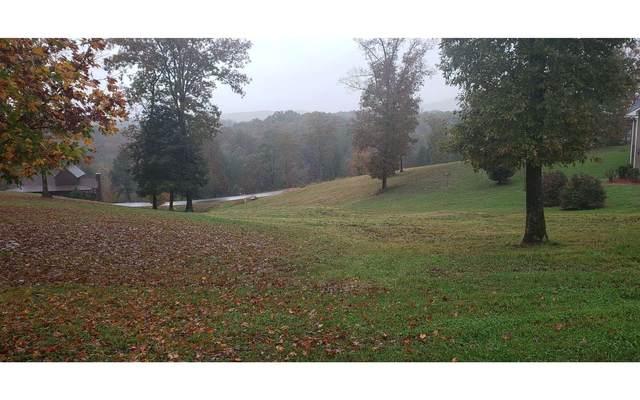 36 Lola Dr, Blairsville, GA 30512 (MLS #301878) :: RE/MAX Town & Country