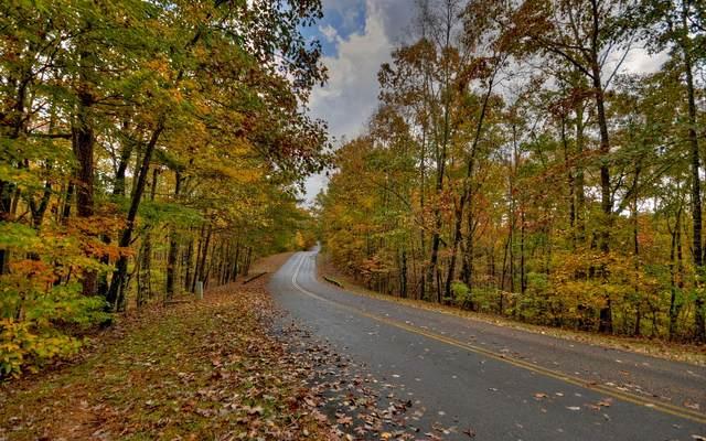 LT169 Doll Mountain Road, Ellijay, GA 30540 (MLS #301886) :: RE/MAX Town & Country