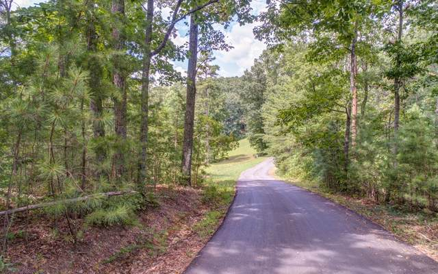 LT 20 Meadowlands Dr, Talking Rock, GA 30175 (MLS #301887) :: RE/MAX Town & Country