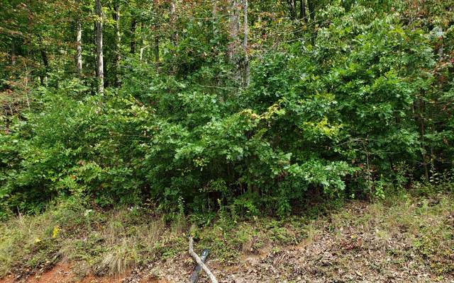 12 Chimney Top Trail, Murphy, NC 28906 (MLS #301897) :: RE/MAX Town & Country