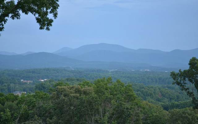 Arbor Lane Lot 76, Blairsville, GA 30512 (MLS #301908) :: Path & Post Real Estate