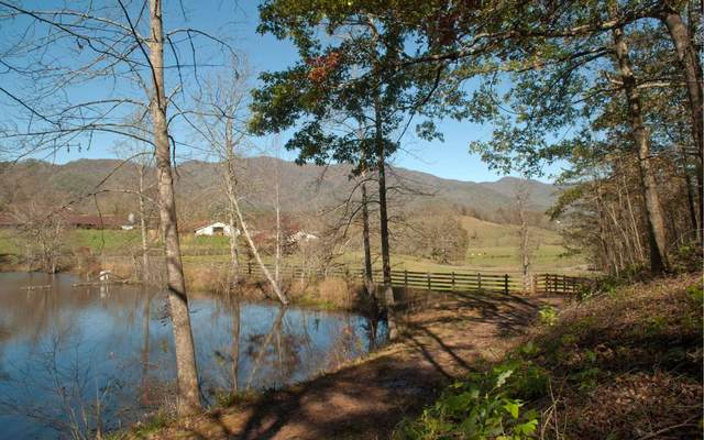 LT 91 Shiloh Stables, Hayesville, NC 28904 (MLS #301935) :: Path & Post Real Estate