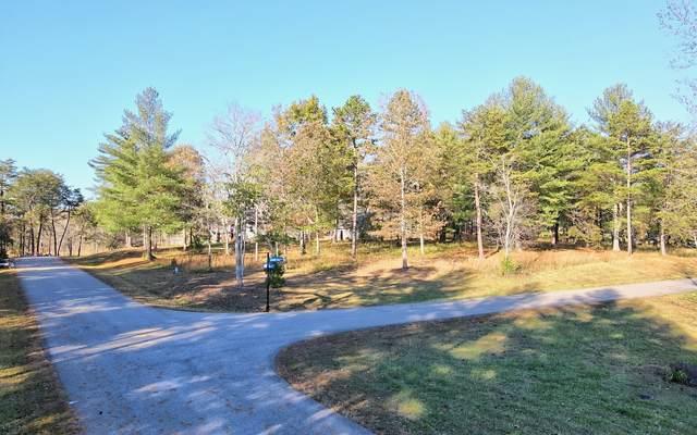 Shoreline Dr Lot 21, Blairsville, GA 30512 (MLS #301951) :: Path & Post Real Estate
