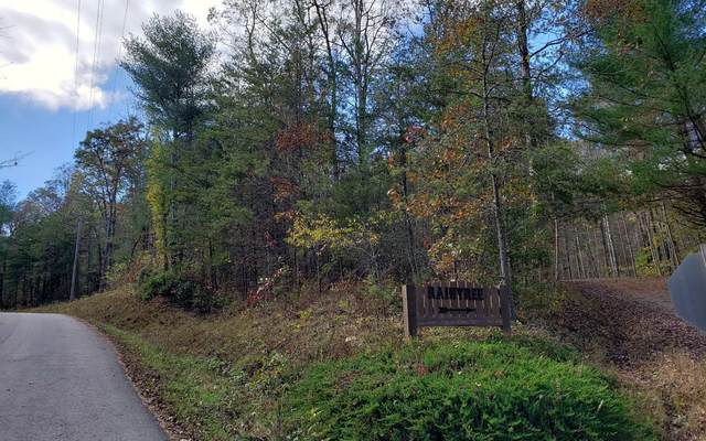 LT 19 Raintree, Blue Ridge, GA 30513 (MLS #301976) :: Path & Post Real Estate