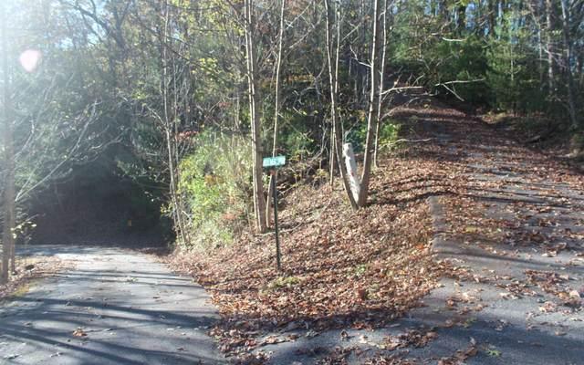LOT 9 Tantrough Farm Ph 2, Hiawassee, GA 30546 (MLS #301999) :: Path & Post Real Estate