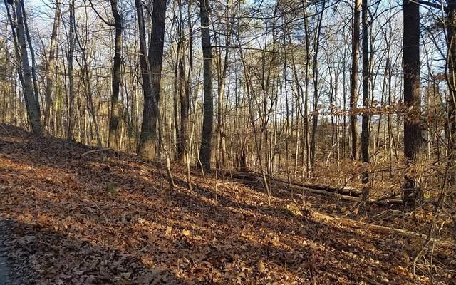 12 Acorn Lane, Warne, NC 28909 (MLS #302003) :: Path & Post Real Estate