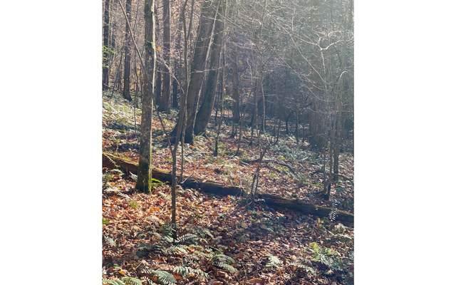 6.3C Hidden Valley/Bear H, Cherry Log, GA 30522 (MLS #302111) :: Path & Post Real Estate