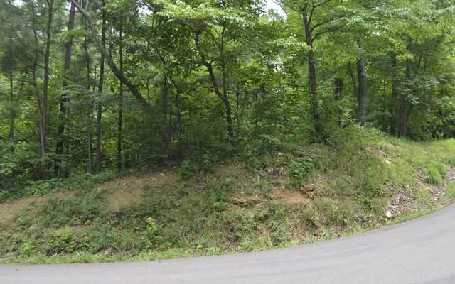 860 Monody Lane, Ranger, GA 30734 (MLS #302122) :: Path & Post Real Estate