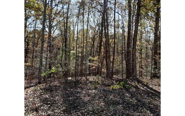 8 Lot #8 Mountain Wood, Murphy, NC 28906 (MLS #302128) :: RE/MAX Town & Country