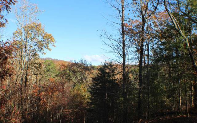 Oakridge Mtn Lt 9, Ellijay, GA 30536 (MLS #302174) :: Path & Post Real Estate