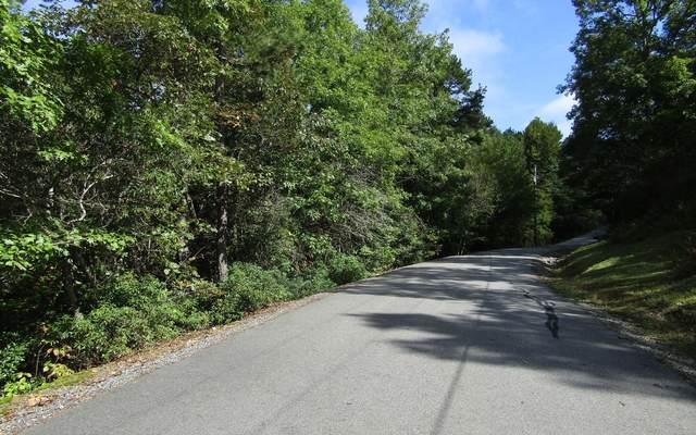 35 Maggie Lane, Murphy, NC 28906 (MLS #302176) :: Path & Post Real Estate
