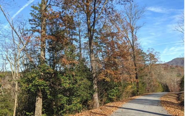 14-15 Fox Crossing, Blairsville, GA 30512 (MLS #302292) :: RE/MAX Town & Country