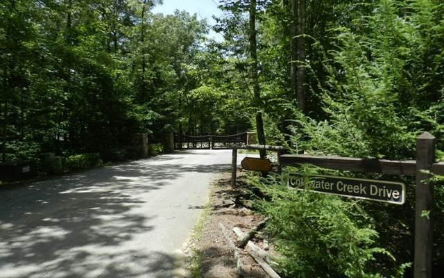 Mineral Bluff, GA 30559 :: Path & Post Real Estate