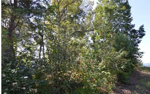 LT 41 Dan Knob, Hayesville, NC 28904 (MLS #302354) :: Path & Post Real Estate