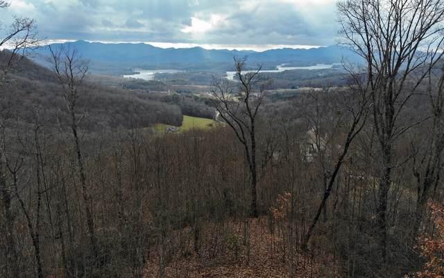 LOT51 Lynn Haven Way, Hayesville, NC 28904 (MLS #302410) :: Path & Post Real Estate