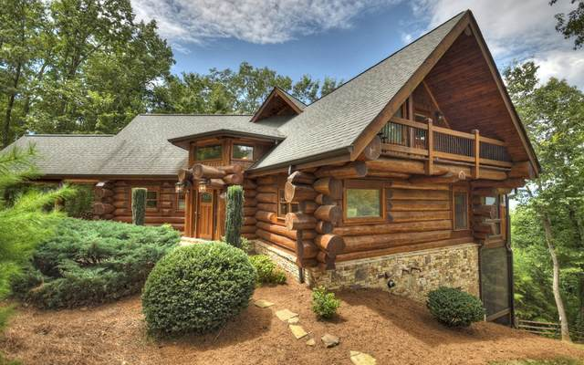 602 Overlook Drive, Blue Ridge, GA 30513 (MLS #302431) :: Path & Post Real Estate