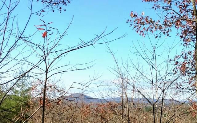 LOT 9 Trillium Heights, Hayesville, NC 28904 (MLS #302479) :: Path & Post Real Estate