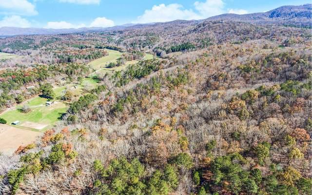 TR. C North Dean Trail, Ellijay, GA 30536 (MLS #302502) :: RE/MAX Town & Country