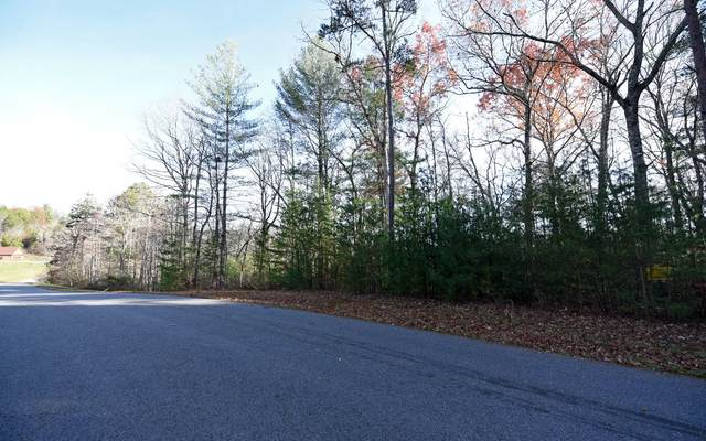 LT121 Fox Lake, Blairsville, GA 30512 (MLS #302532) :: Path & Post Real Estate