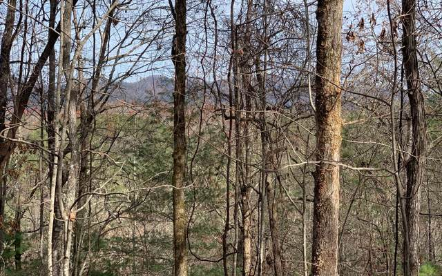 LT 12 River Cove Sub., Hayesville, NC 28904 (MLS #302533) :: RE/MAX Town & Country