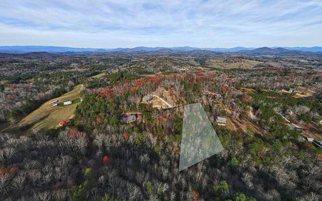 LOT52 Ray Drive, Blairsville, GA 30512 (MLS #302557) :: Path & Post Real Estate