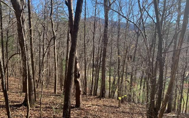 #29 Brasstown Creek, Young Harris, GA 30582 (MLS #302559) :: Path & Post Real Estate