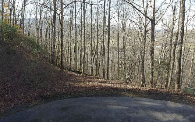 LOT12 Brody Lane, Hiawassee, GA 30546 (MLS #302563) :: Path & Post Real Estate