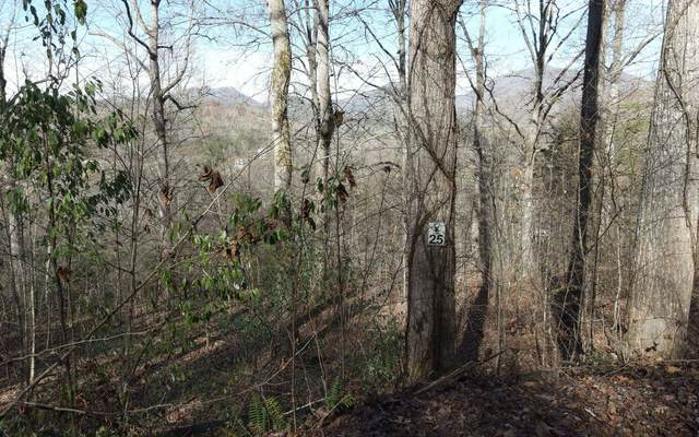 LT 25 Brody Lane, Hiawassee, GA 30546 (MLS #302571) :: Path & Post Real Estate