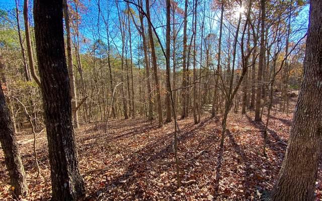 LT10 Country Hills Road, Ellijay, GA 30540 (MLS #302589) :: Path & Post Real Estate